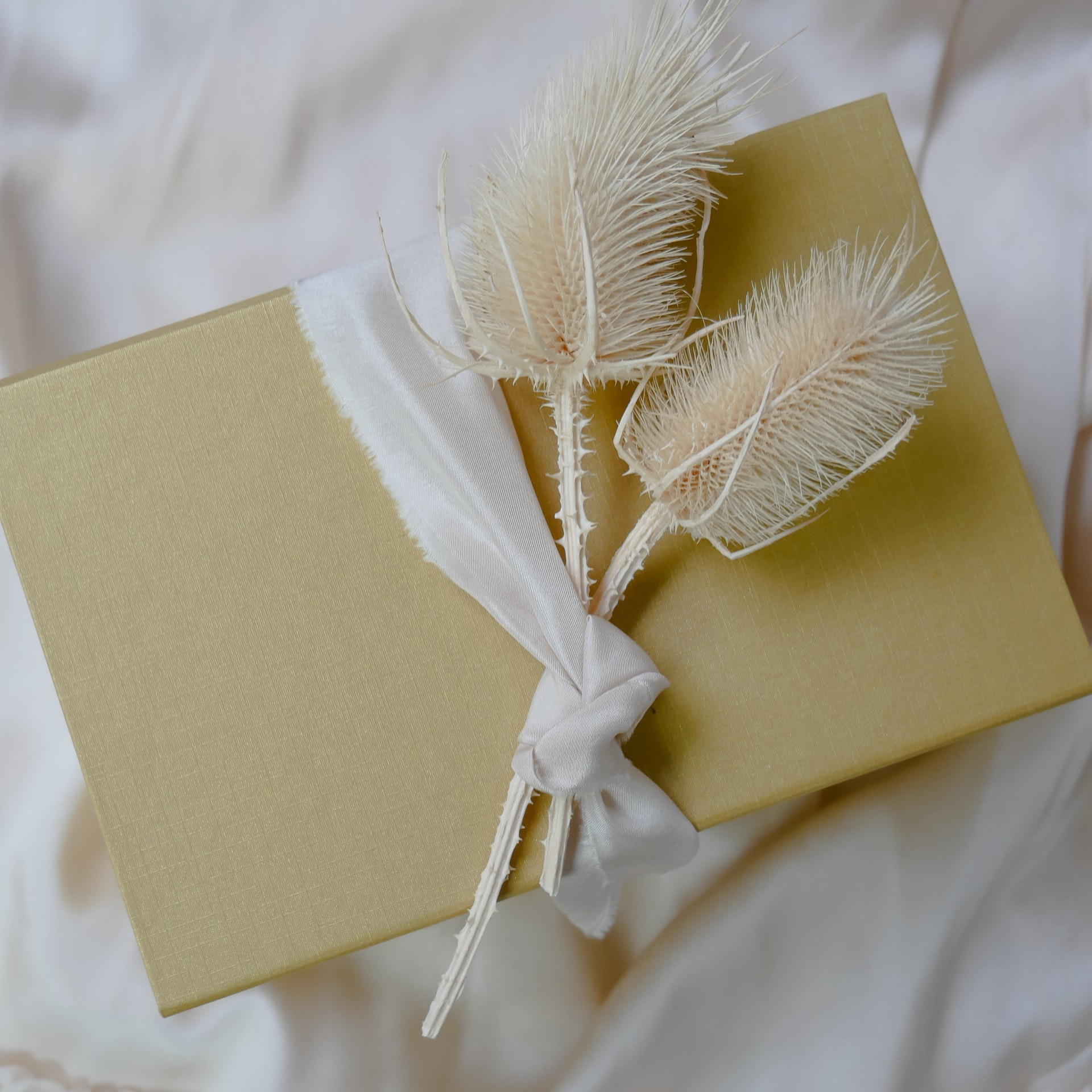 Massage Therapy Gift Cards